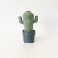 Crochet Cactus with Pink Flower