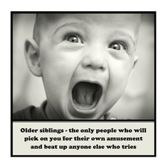 Funny Magnet | Sibling Brother Sister Gift | Pick on you for their amusement