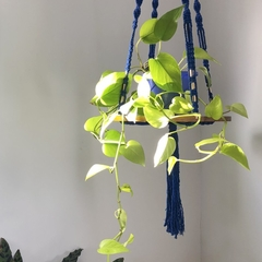 Plant hanger XL, cotton rope, wood base, cobalt, macrame, copper
