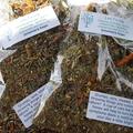 Leto Tea, herbal remedy 20g