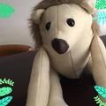 Mr Hedgehog Soft Toy