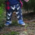 Beast Earth Harem Leggings Baby,Boy , toddler