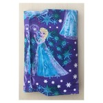 Frozen Elsa Pencil Wallet,  pencil case, drawing set, travel toy