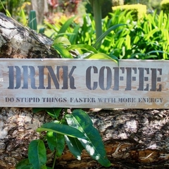 Drink Coffee Do Stupid Things Faster With More Energy