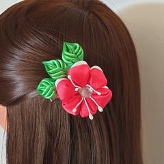 Hair clip #LDHC29