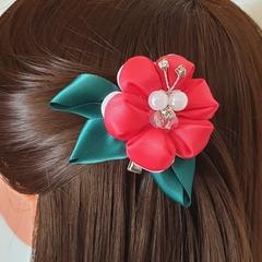 Hair clip #LDHC28