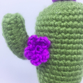 Crochet Cactus with String of Hearts Plant in Pink Pot