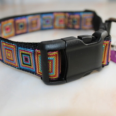 Neon Lights Dog Collar