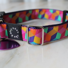 Colour Block Collar with ID tag and custom engraving