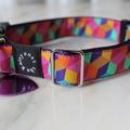 Colour Block Collar