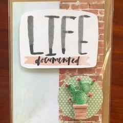 Life Documented; Cactus Card