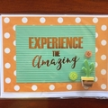 Experience the Amazing; Polka-Dot Cacti Card