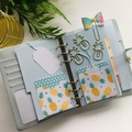 Pack of 8 - Pineapple - Planner Accessories