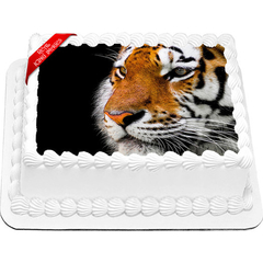 Tiger Edible Icing Image Cake Topper