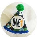 Wild One Woodland Boys Birthday Onesie & Party Hat Boys 1st Birthday