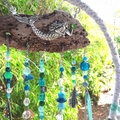Dream Catcher Wind Catcher Beach Mermaid Sea Glass Blue Aqua Turquoise Starfish