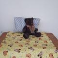 TEDDY - Nappy Change Mat Set - Baby