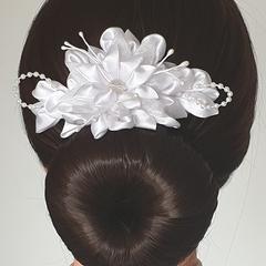 Hair clip # LDBHC52