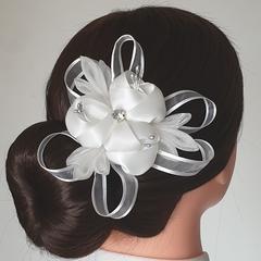 Hair clip #LDBHC48