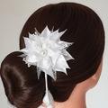 Hair clip #LDBHC47