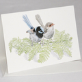 Australian Favourite BIRDS GIFT BOX of 8 greeting cards with envelopes