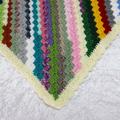 Multi-coloured Corner to Corner Blanket with Cream Border