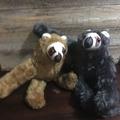 Mr Sloth Soft Toy