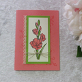 Any Occasion/Birthday Card