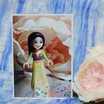 Mulan Mini Scene Photo on a Blank Card