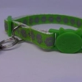 Cat Collar - Lime Green with Silver Paw Prints