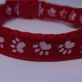 Cat Collar - Red with White Paw Prints