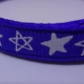 Cat Collar - Blue with White Stars