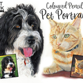 A5 Custom Colour Pencil Pet Portrait