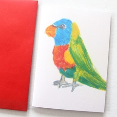 Blank Card, Rainbow Lorikeet, Birthday Card, Thank You Card, Christmas Card