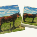 Personalised Jigsaw Puzzle 30 piece 100% Australian Made + free text added
