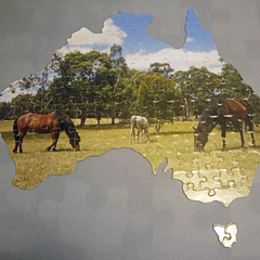 Personalised Jigsaw Puzzle Australia Shape 100 piece 100% Australian Made