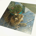 Personalised Jigsaw Puzzle 36 piece 100% Australian Made + free text added