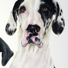 Custom Watercolour Pet Portrait 8 x 10 Pet | Lovely Gift Idea | Animal Art