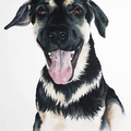 Custom Watercolour Pet  11 x 14 | Wonderful Gift Idea | Animal Art