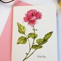 Pink Rose A6 Botanical Art Greeting Card Blank inside