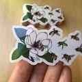 Bees & Magnolia Flower Transparent Art Sticker