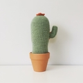 Crochet Cactus with Orange Flowers