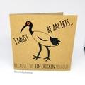 Bin Chicken (ibis) Lovers Pack // Studs, Brooch or Magnet & Card // Free Post