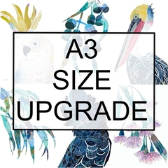 A3 size upgrade