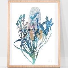 Banksia Australian Print A4