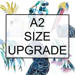 A2 size upgrade