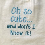 Oh so cute  embroidered bib
