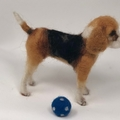 Needle felted Beagle, custom portrait dog, OOAK felt animal, free shipping