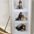 Selkie Art Prints, Set of 5 prints, Art doll wall art, 5.5 by 4 inch