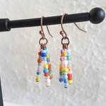 Colourful Rainbow seed bead tassel earring (Retro Tropical Hippie Funky Artsy )